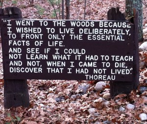 Thoreau quotation near cabin site at Walden Pond